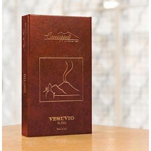 5101 Vesuvio